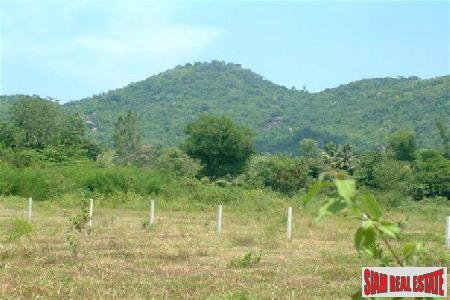 Plot of Land for sale ready to be build on.